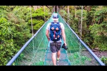 SKETCHY-JUNGLE-BRIDGE